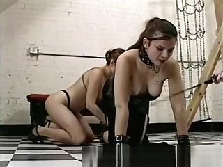 Girl Slaves Be possessed A Merciless Shemale